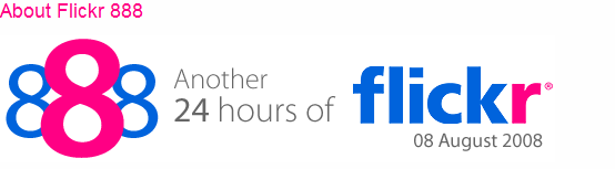 24 hours of Flickr