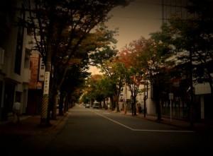 Keyaki Street, Niigata, Japan