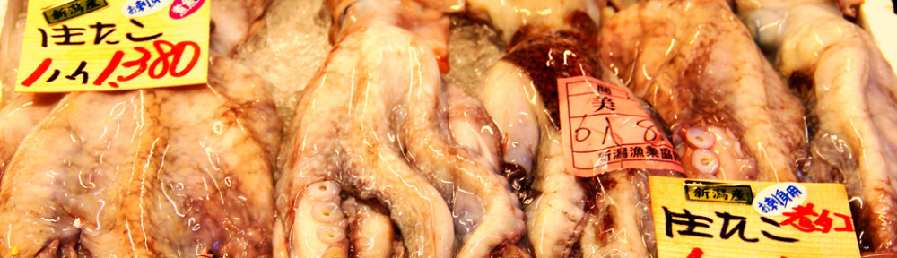 Octopus, Niigata Furusato Mura