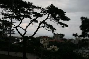 松園別館/Pine Garden