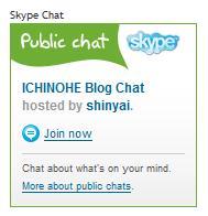 skype Public Chat