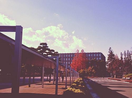 いろいろな大学の学生と接することは大事だと感じた4ヶ月:埼玉工大、立正大での非常勤1年目終了
