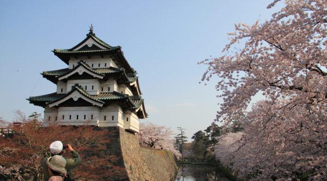 弘前さくらまつり開幕:「お城と桜」の定番風景は、今年をのがすと、しばらく見ることができなくなる?