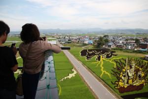 Artistic Rice Paddy, Aomori / 田舎館田んぼアート