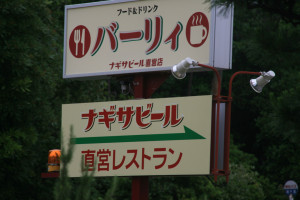 Barley, Shirahama, Wakayama