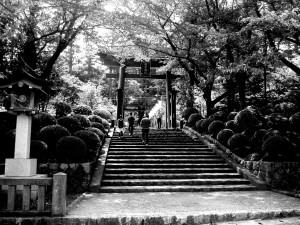 弥彦神社、新潟県、日本。 yahiko jinja, niigata city, japan